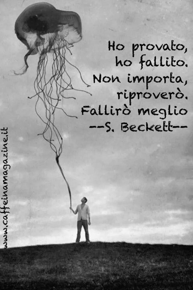 Ho provato, ho fallito. Non importa, riproverò. Fallirò meglio. Samuel Beckett