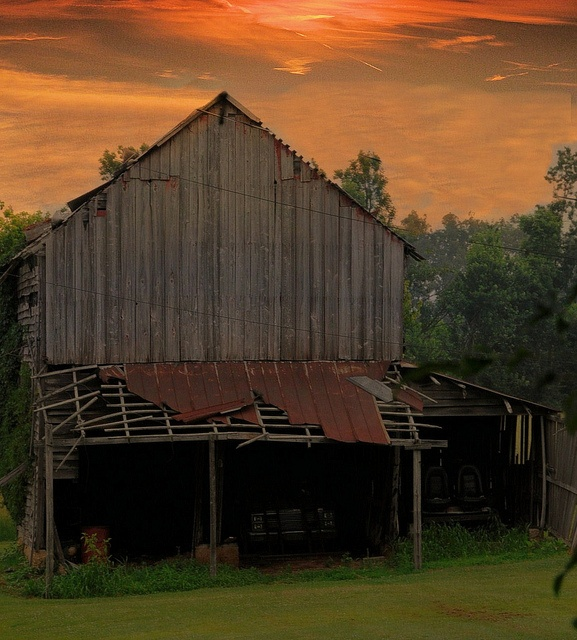 499 Best Images About BaRn-oLoGy On Pinterest