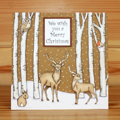Christmas has arrived at Hobby Art! CS138D 'Nature Trail' A5 Clear set contains 22 stamps. Designed by Sharon Bennett. Overall size of set - All our clear stamps are made with photopolymer resin. This set is perfect for scene building and great to use all year round. Overall size of set - 235mm x 155mm approx. Card made by Becki Mayes