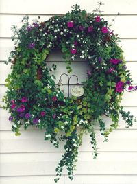 HOW TO MAKE A LIVING WREATH: For a spectacular living sculpture to hang on doors, outdoor walls, fences, or patio tabletops, a living wreath makes a beautiful visual. This example: Bacopa, Million Bells, Verbena and Golden Moneywort