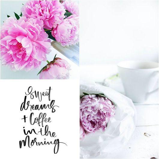 La mattina, quando ti alzi, non ti chiedere che cosa devi fare, ma che cosa puoi fare per essere felice. ~ Gianfranco Funari ** Buongiorno ~ Good Morning ~ Guten Morgen ~ Goede Morgen ~ Bonjour ~ Buenos dias ~ Bom dia ~ Kalimera ~ Jó reggelt ~ Dzień dobry ~ Доброе утро ~ Dobro jutro ** Buon #sabato a tutti.