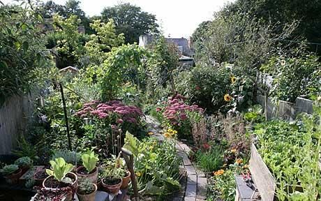 Urban garden: Edible Garden, The Block, Kid