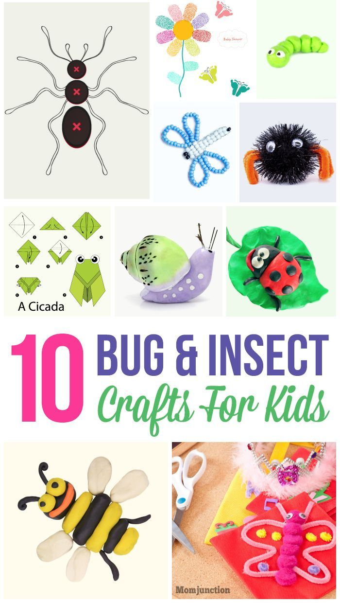 Top 10 Bug & Insect Crafts For Kids: ten super creative insect craftworks to help her get started. Check them out here.