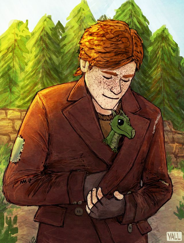 Charlie Weasley Harry Potter Drawings Harry Potter Characters Harry Potter Universal