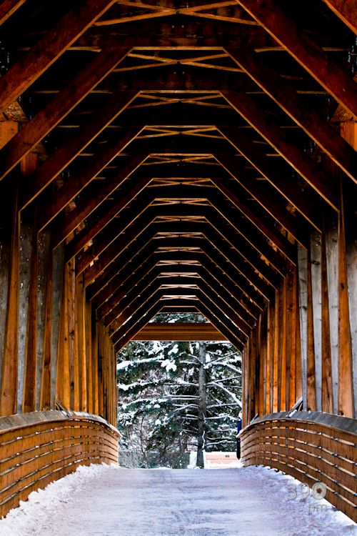 Timberframe bridge in Golden, BC. Visited in Oct 2013, at breakfast at a lovely resteraunt called The Island.