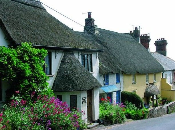 Isn T Thurlestone So Cute Quintessential Devon Houses And We Have A Little Availability Fo Dog Friendly Accommodation Dog Friendly Holidays Seaside Cottage