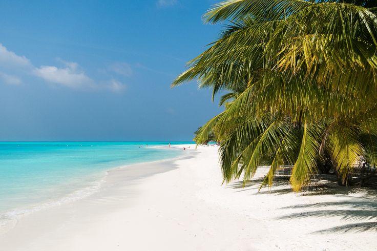 Meeru Island Resort & Spa | North Male' Atoll | Maldives | Top Rated 4 Star Resort in Maldives