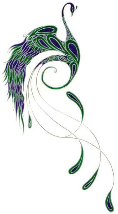 http://www.peacocktattoos.net/images/peacock-tattoo-drawing.jpg