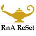 Managing Yeast Overgrowth. RnA ReSet Logo white