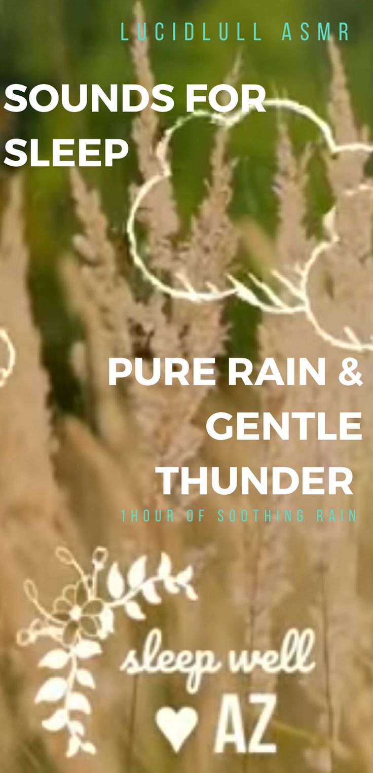 Sounds for sleep, Rain and thunder for sleep 1 hour of calming nature sounds. ASMR Youtube Video.