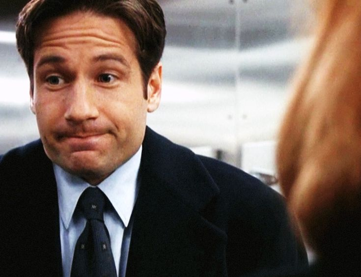 """David Duchovny Calls Mulder """"the Worst F.B.I. Agent of All Time"""""""