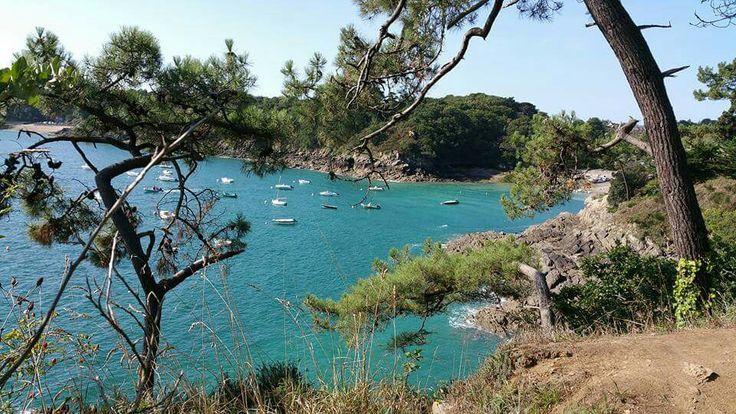 Balade de la pointe du Grouin  : boucle en 8 de 15 km env. Départ Port Pican. Qualifiée une des plus belles balades de Bretagne... Je confirme, c'est magnifique! Carte gratuite et infos office de tourisme de Cancale