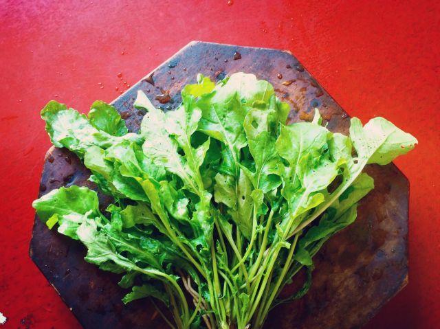 ルッコラの特徴を活かしてつくる夏仕様のサラダとイタリア風の冷製パスタ