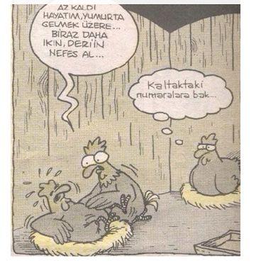 Doğum yapan tavuk... #komik #karikatür #karikatur #enkomikkarikatür #enkomikkarikatur #karikaturcu #karikatürcü #funny #comics #tavuk #dogum