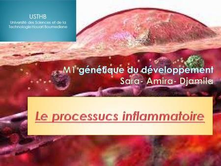 le processus inflammatoire
