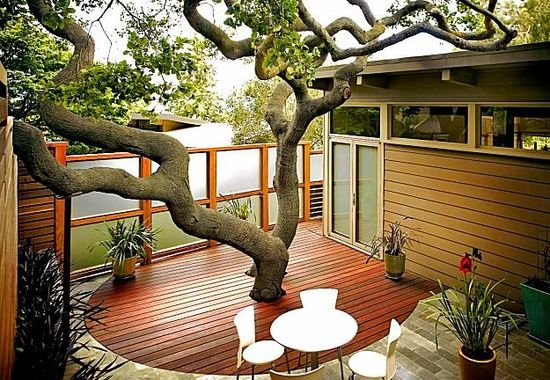 i love decking that is built around an existing tree rather than chopping in down. we have a deck doing the same thing around our mango tree <3