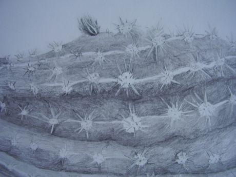 Doris Rohr - Staff - Fine Art - Belfast School of Art