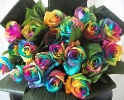 regenboog bruiloft - Google zoeken
