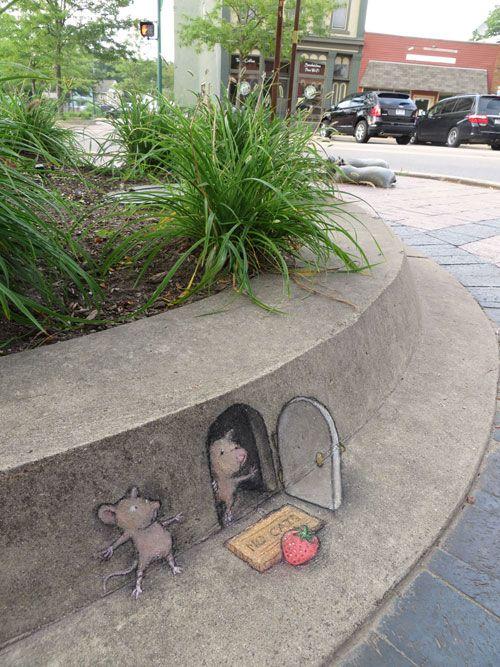 チョークや木炭で街中に描かれた 立体感を感じるアニマルドローイングシリーズ