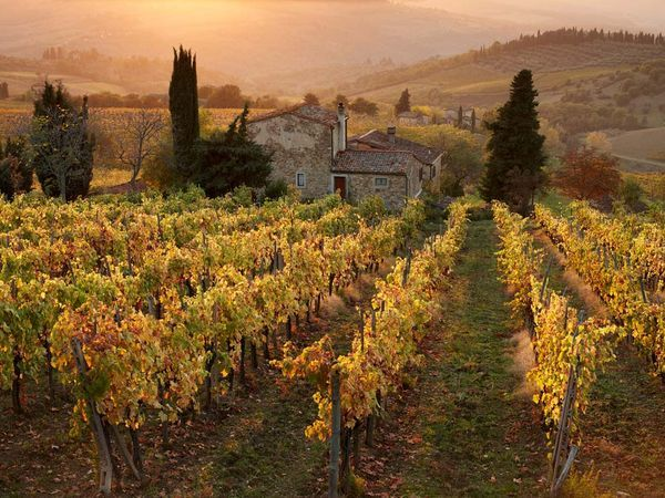The sun sets on a vineyard farmhouse nestled in the hills near Panzano, Italy