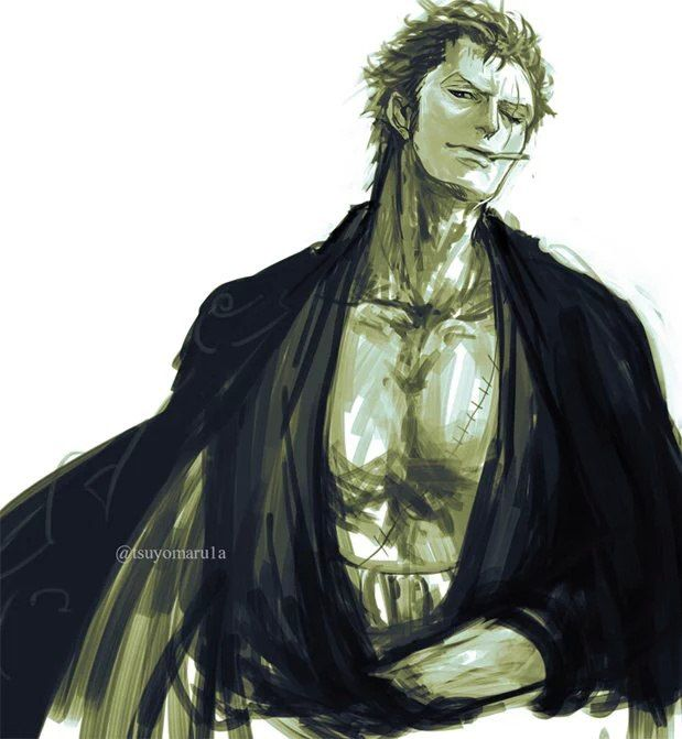 1000+ Ideas About Roronoa Zoro On Pinterest