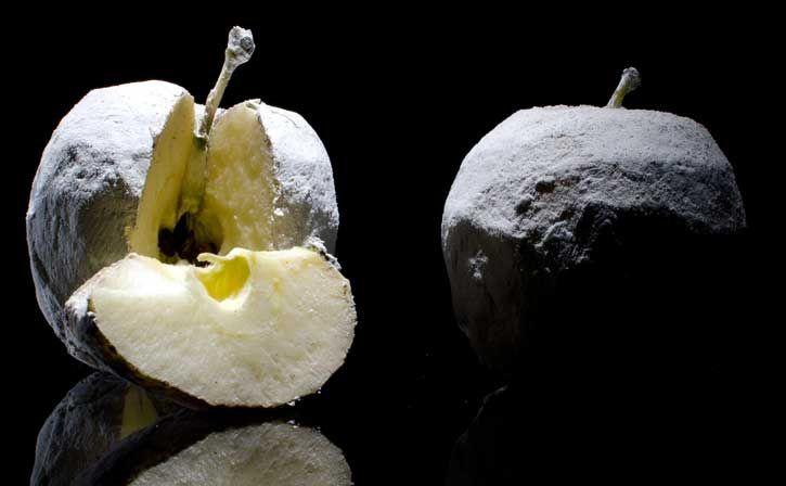 Fragrant Apples by Chef Andoni Luiz Aduriz at Mugaritz - agalita, kaolin