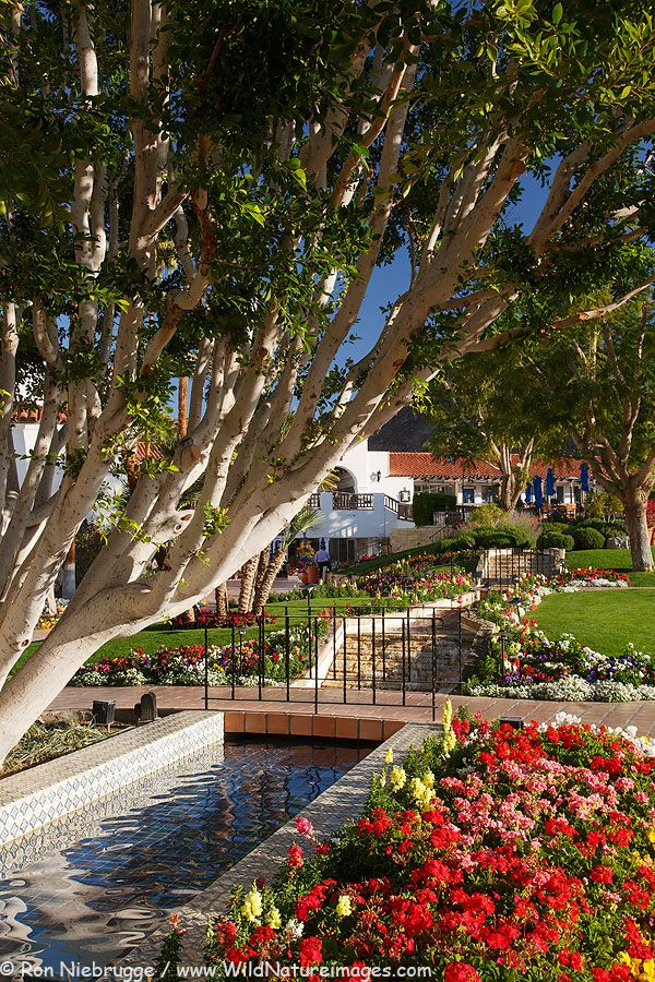La Quinta Resort near Palm Springs