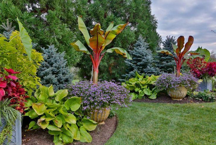 Хоста в ландшафтном дизайне: особенности ухода и 80 гармоничных композиций для сада http://happymodern.ru/xosty-v-landshaftnom-dizajne-foto/ Хоста в оформлении тропического сада в загородном доме