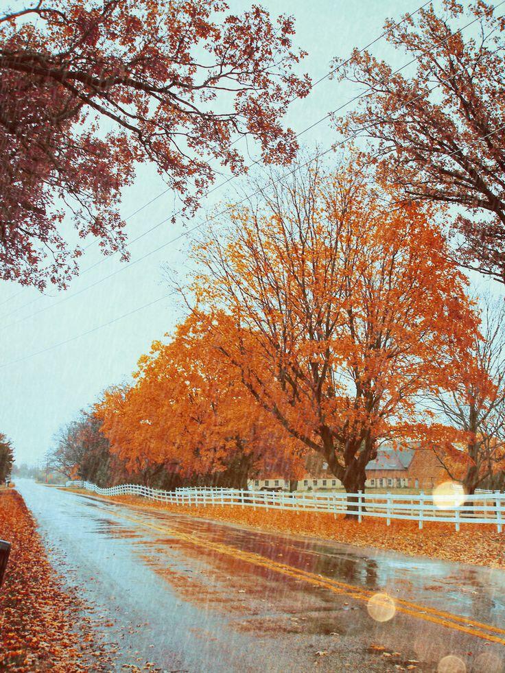 November rain...wonderful!!!