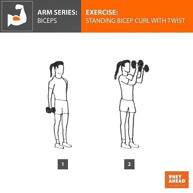 how to build up arm muscles with dumbbells