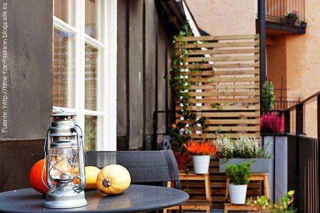Si tu balcón limita con el del vecino o con otro sector de tu casa que querés esconder (como un lavadero, por ejemplo), podés armar una estructura para colgar macetas o por donde puedan trepar plantas.