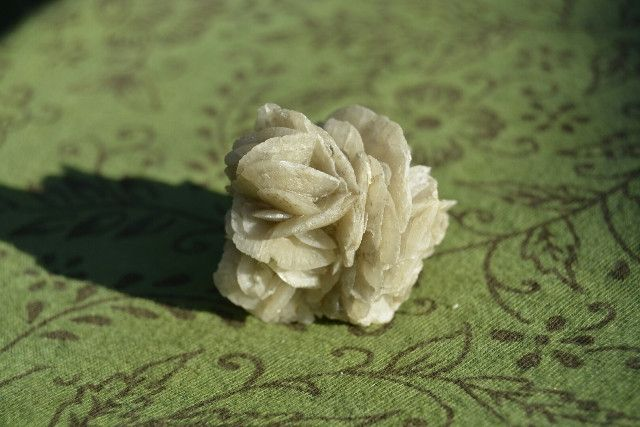 Gypsum Flower - Such a beauty! They're part of the selenite family and are also called 'desert rose' or 'desert flower'.