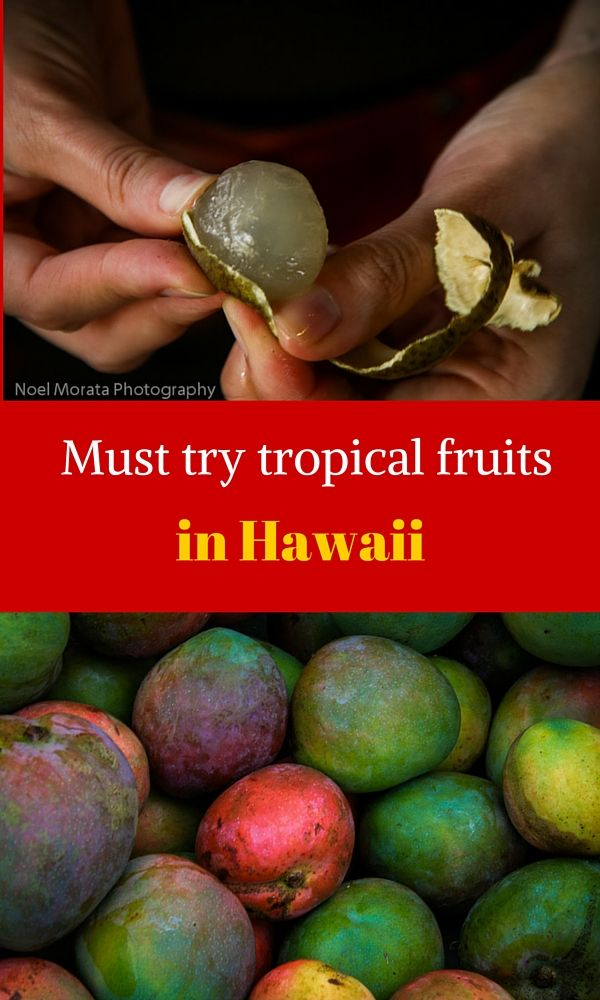 Here are the most popular and exotic tropical fruits that you should try when you visit Hawaii. Check out the local farmers markets or fruit stands and look for some of these tropical fruits in season http://travelphotodiscovery.com/tropical-fruit-from-hawaii/ #hawaiifruit #hawaiianfruit #tropicalhawaiianfruit #hawaii