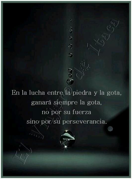 El que persevera alcanza no cabe duda.