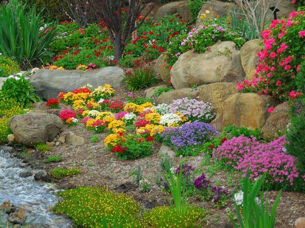 Kwiaty Wieloletnie Na Skalniak Kamienna Rzeka Kwiaty Wiosenne Plants Garden Outdoor Decor