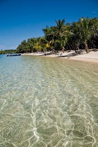 Isla Bastimentos, Panama. Rey Polo's beach on a tiny island, made up in large part by a lush tropical animal refuge. This is where I had my first close encounter with a sea turtle laying her eggs in the sand under a full moon.
