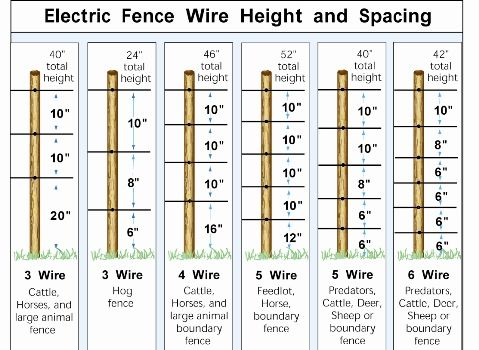Electric Fence Wire Spacing Heights Homesteading