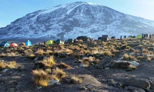 There are many ways to climb Kili – but for first time climbers our favourite is the MACHAME ROUTE.It's a beautiful route to the summit, taking in both the West and Southern face of the mountain. The route takes you past the scenic Shira Plateau and Lava Tower before descending down to Barranco where you…