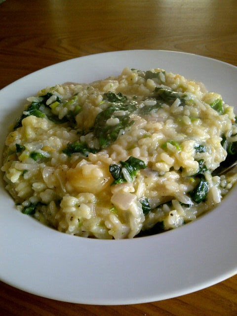 Parmesan shrimp risotto with spinach, red onion, and leeks.