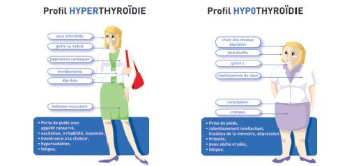 profil hyperthyroidie