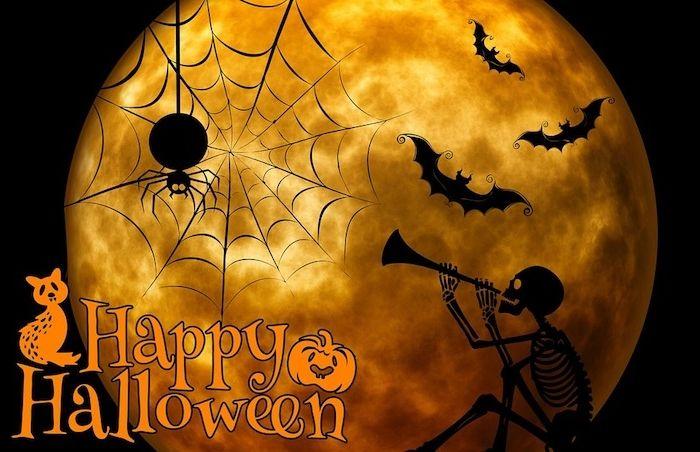 ein Vollmond eine Spinnennetz und die Wörter Happy Halloween   Halloween Hintergrund