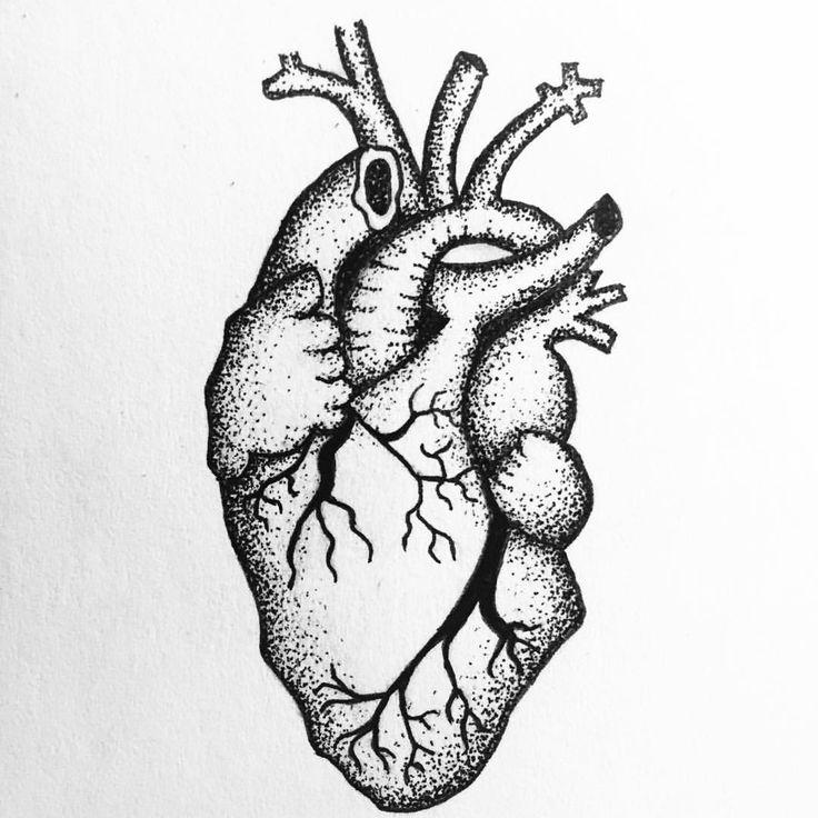 """Soulreflection (@soulreflection) på Instagram: """"Probably not anatomically correct, but I still like it  #anatomy #anatomical #heart #pen #micron…"""""""