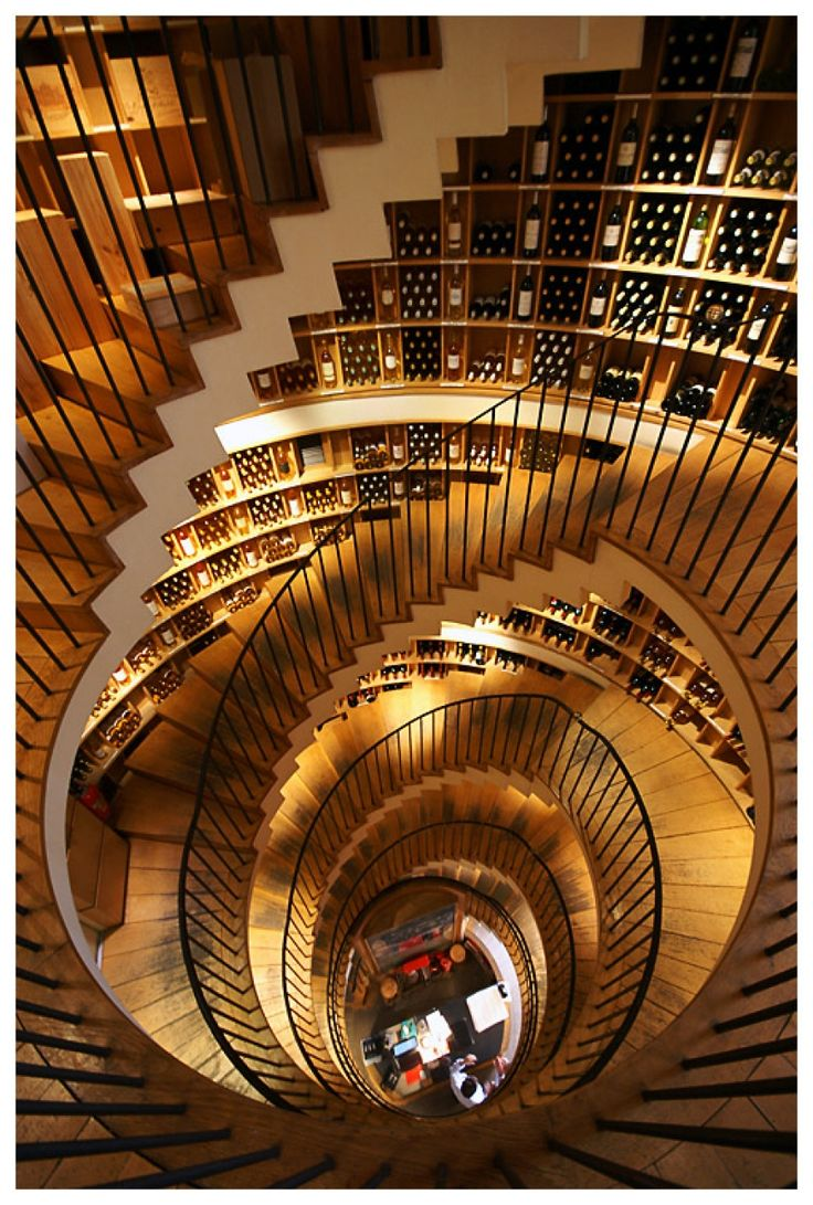 L'Intendant, wine shop in Bordeaux...if only there were a library like this!!!