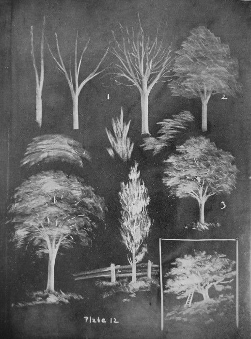 """How to """"sketch"""" on a blackboard, teachers' instruction book published in 1908.  Fantastic examples!"""