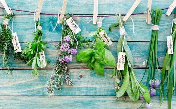 Αγχολυτικά Βότανα και Μπαχαρικά   ΥΓΕΙΑ - ΔΙΑΤΡΟΦΗ