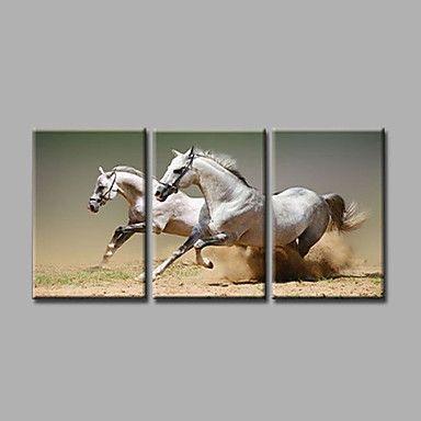 【今だけ☆送料無料】 アートパネル  動物画3枚で1セット ホース 馬 競走馬 レース【納期】お取り寄せ2~3週間前後で発送予定