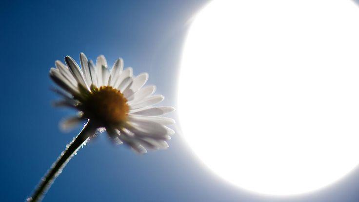 Wechselhaftes Wetter am Dienstag: Ab Mittwoch nimmt der Sommer Anlauf