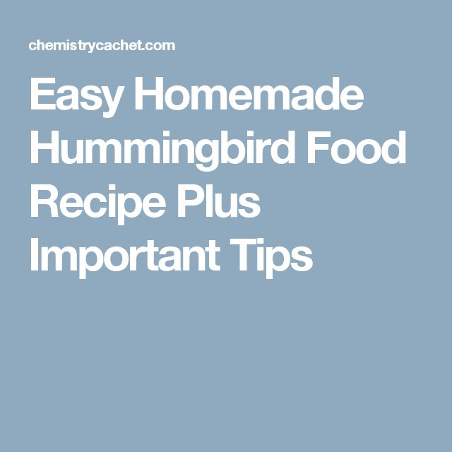 Easy Homemade Hummingbird Food Recipe Plus Important Tips