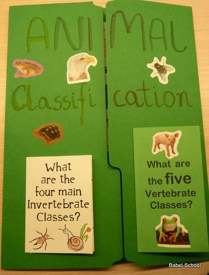 Babel School in Taiwan: Animals Classification Lapbook