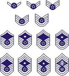 17 best ideas about Navy Rank Insignia on Pinterest | Navy rank ...